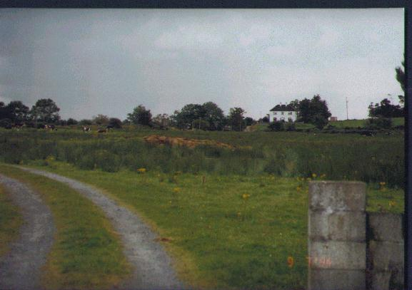 Burns farm in Shanagolden, Ireland