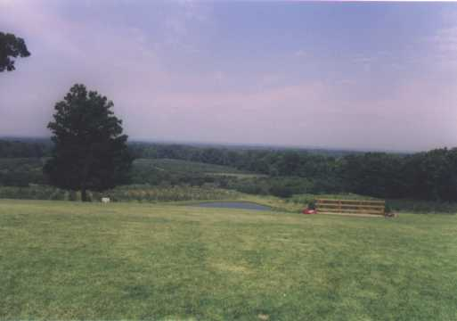 View behind Mapleside Farms